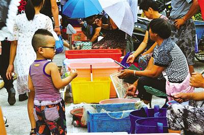 雁荡社区海鲜美食节开幕